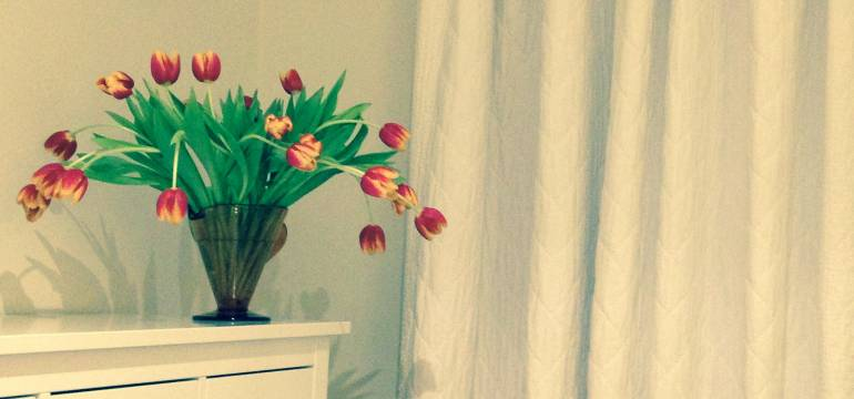 Tullips in a living room