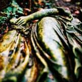 An stone angel on the ground
