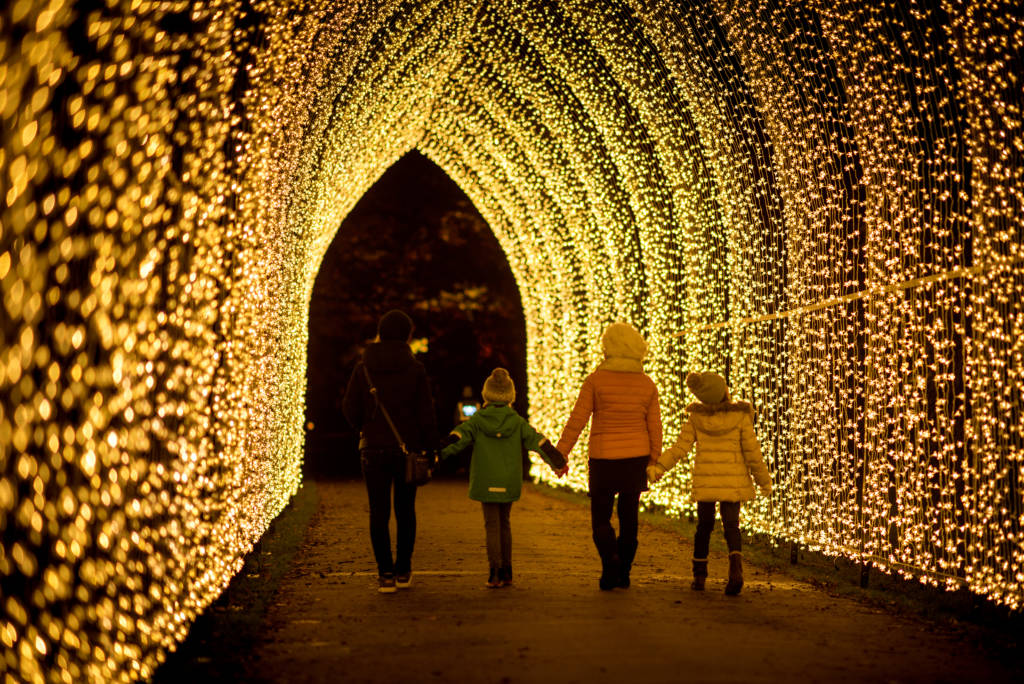 London Winter Lights Kew
