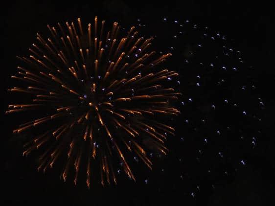 Newham Fireworks
