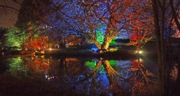 Enchanted Syon Park
