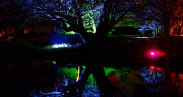Syon Park Enchanted Woodland Trail