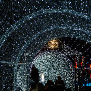 Top 5 Picks for London's Winter Illuminations 2018-2019