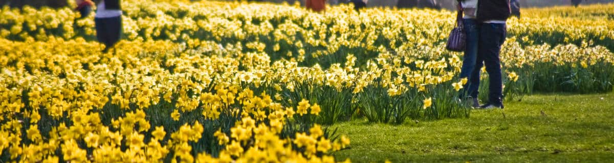 The Best Things About Spring in London
