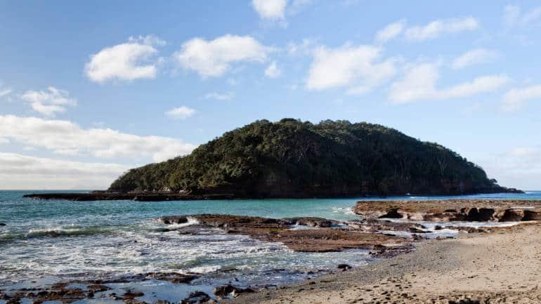 Goat Island, Leigh