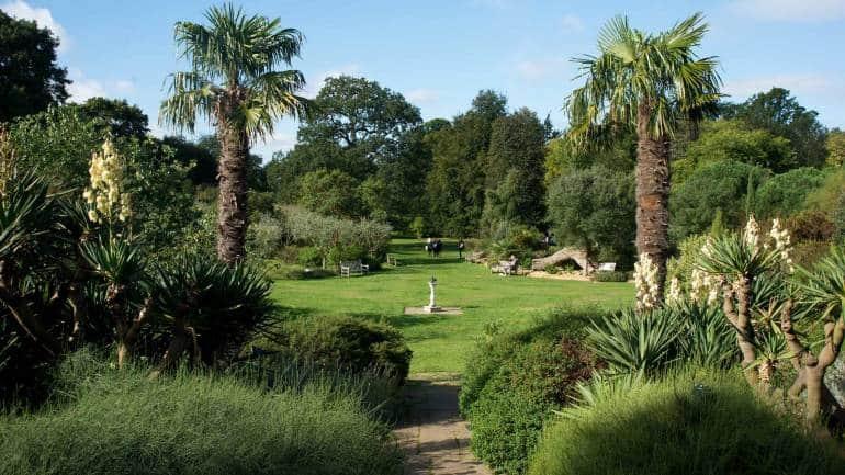 Mediterranean Garden at Kew