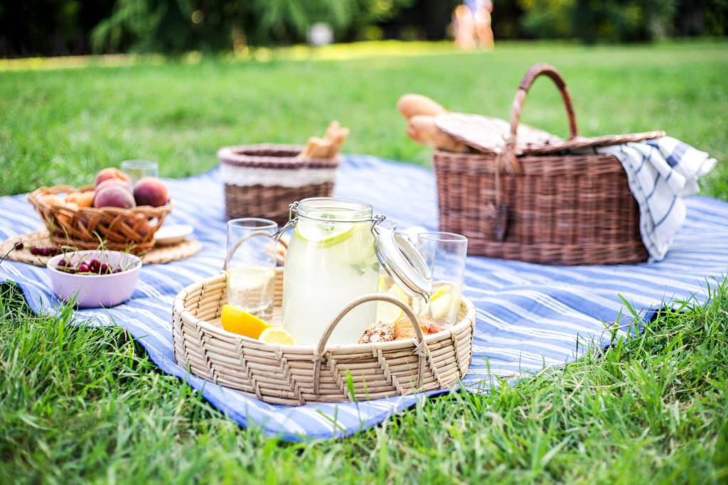 picnic on the grass with blanket, basket and drinks in tray