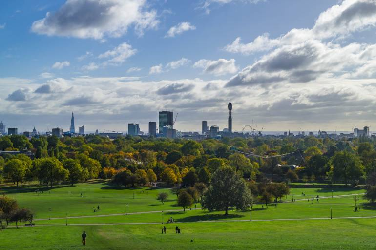 View of Primrose Hill in summer