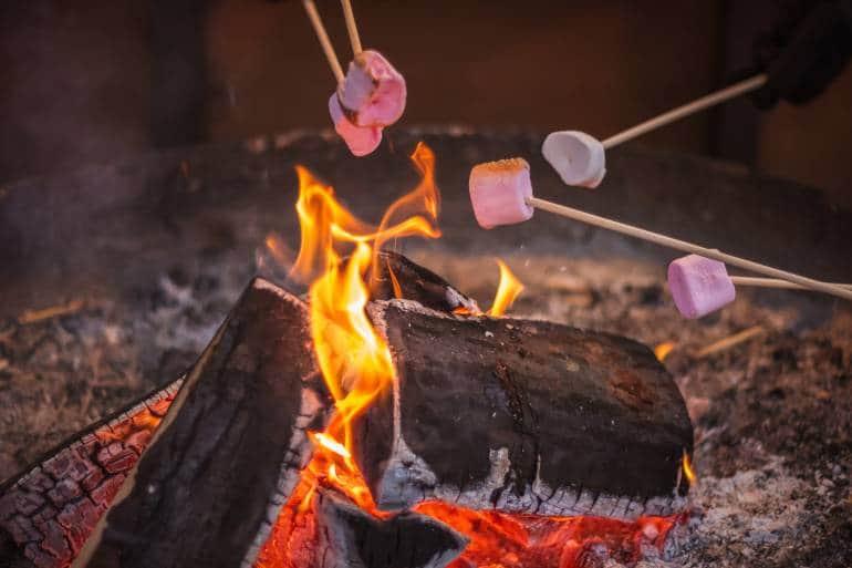 roasting marshmellows over a campfire