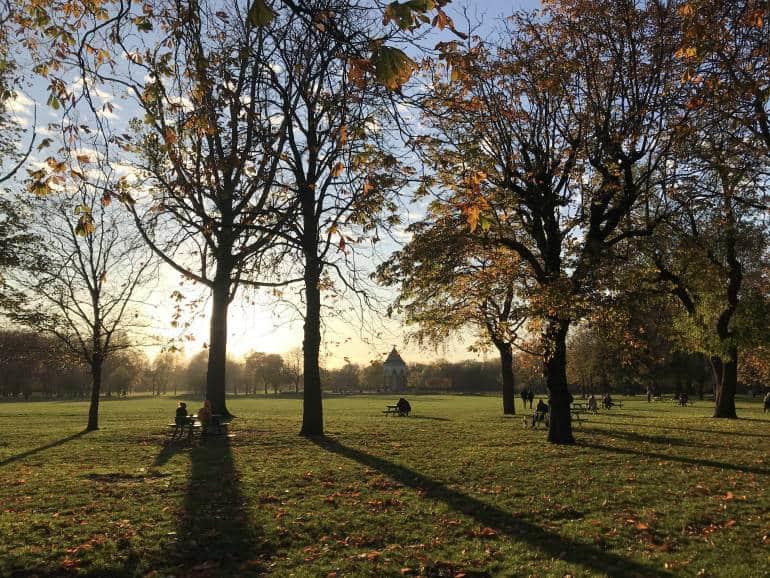 Last rays of lights on an autumn day creating shadows.