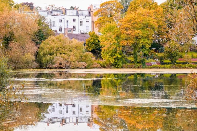 Autumn scene of Hampstead Heathreflected on pond