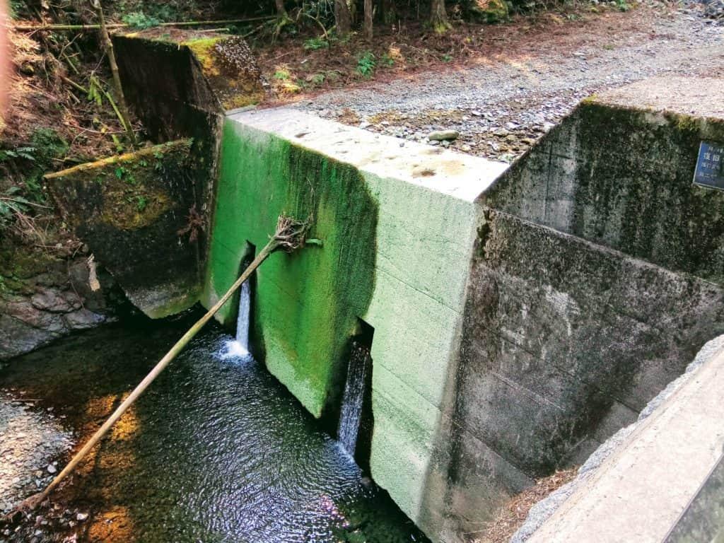 Kumanokodo concrete installation