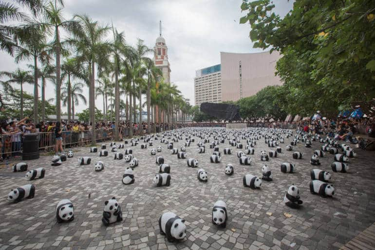 Exhibition of panda in front of Hong Kong Cultural Centre.