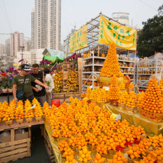 Chinese New Year Flower Markets