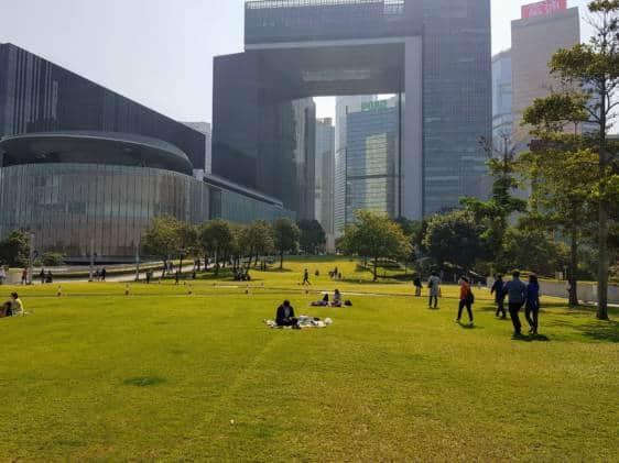 The grassy Tamar Park
