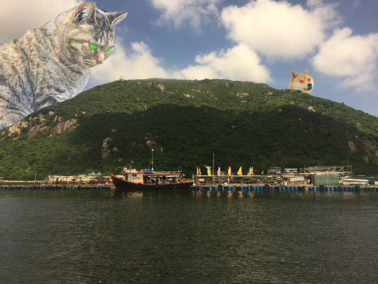 Sok Kwu Wan lamma island day trip