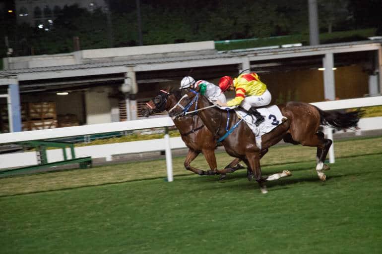 horse racing happy valley hong kong