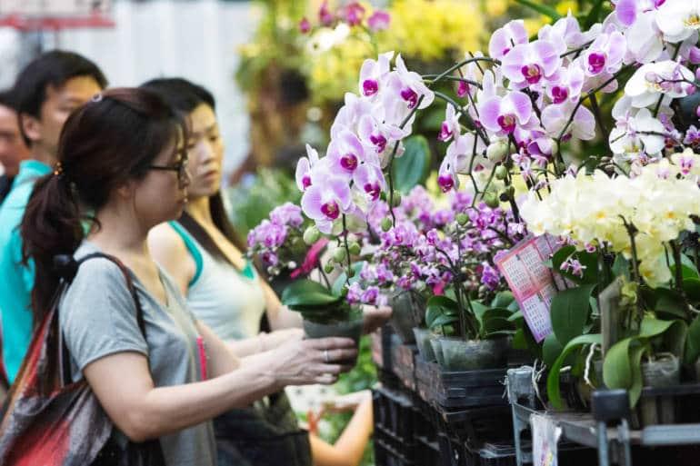 kowloon markets - flowers