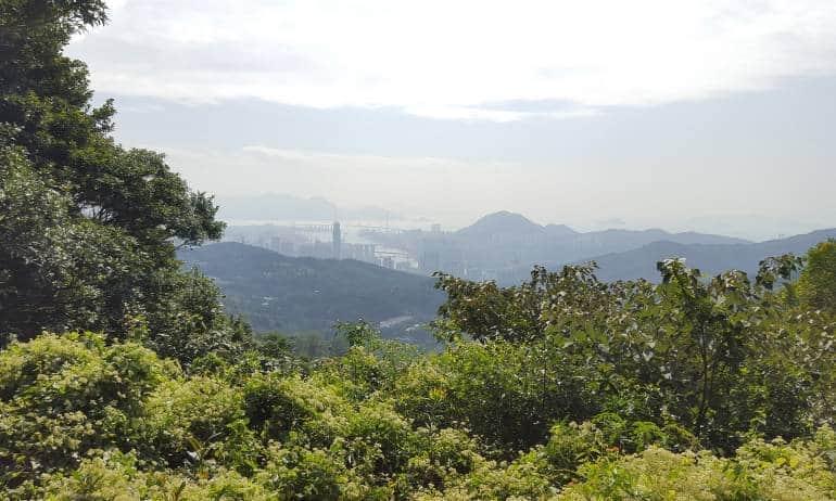 Tai Mo Shan Hong Kong hikes